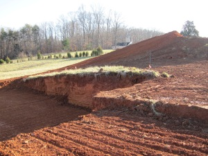 The footprint of the plan is evident in the earthwork.